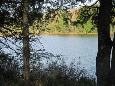 Vilas County Residential Lots & Land For Sale: On Sunridge Dr
