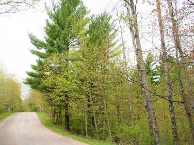 Eagle River WI Residential Lots & Land For Sale: $95,000