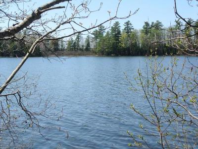 Minocqua WI Residential Lots & Land For Sale: $122,000