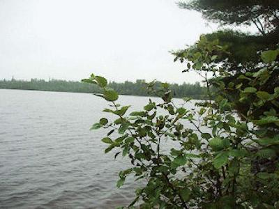 Glidden Residential Lots & Land For Sale: On Summit Lake Dr