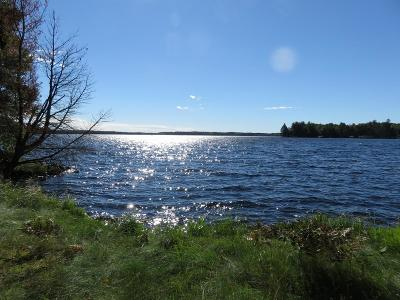 Three Lakes Residential Lots & Land For Sale: 6421 Big Lake Loop Rd E