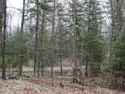 Oneida County, Lincoln County, Price County Residential Lots & Land For Sale: On Alva Rd N