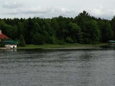 Three Lakes Residential Lots & Land For Sale: 419 17 Bonkowski Rd