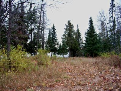Vilas County Residential Lots & Land For Sale: 7652 Frontier Rd