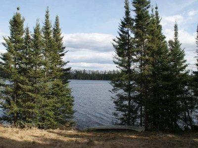 Vilas County Residential Lots & Land For Sale: Lot 18 Bear Tr