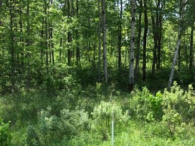 Oneida County, Lincoln County, Price County Residential Lots & Land For Sale: W11506 Cth M