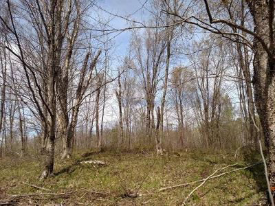 Residential Lots & Land For Sale: N6805 Hanson Rd