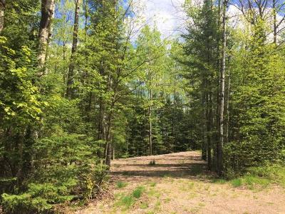 Residential Lots & Land For Sale: On Wilson Lake Rd