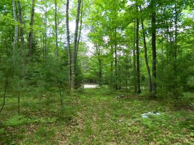 Residential Lots & Land For Sale: On Black Lake Rd