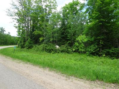 Crandon Residential Lots & Land For Sale: On Sand Lake Rd