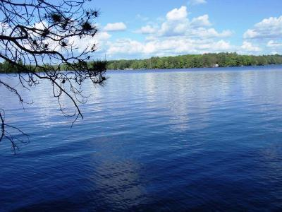 Three Lakes Residential Lots & Land For Sale: 7668 Wheeler Island Rd #LOT #3