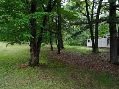 Rhinelander Residential Lots & Land For Sale: 4450 Harmony Hill Ln