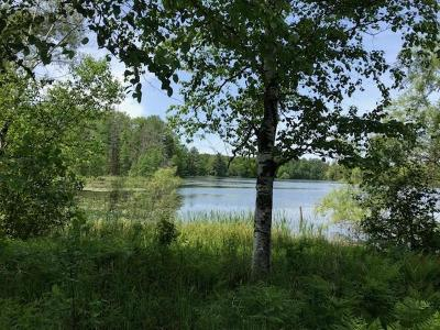 Rhinelander Residential Lots & Land For Sale: 3341 Faust Lake Rd S
