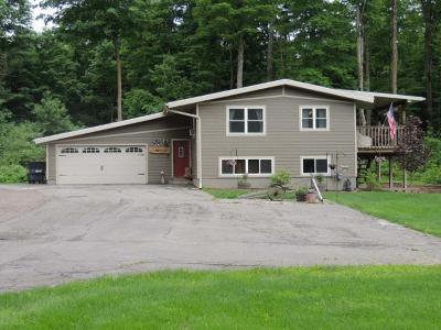 Antigo Single Family Home For Sale: W9937 Sunnyside Rd