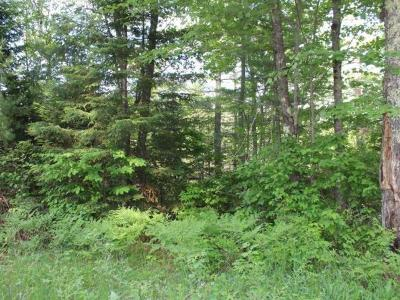 Eagle River WI Residential Lots & Land For Sale: $79,000