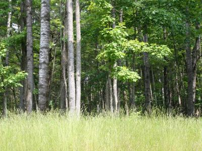 Eagle River Residential Lots & Land For Sale: On Whitetail Crossing Rd #Lot 32