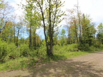 Eagle River Residential Lots & Land For Sale: Lot 7 Buck View Ln
