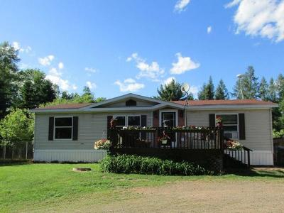 Langlade County, Forest County, Oneida County Single Family Home Active O/C: 10368 Rocky Run Rd