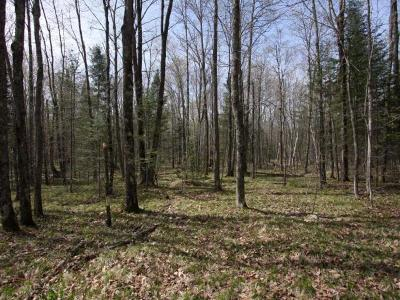 Crandon Residential Lots & Land For Sale: Off Johnson Rd