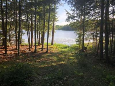 Lac du Flambeau WI Residential Lots & Land For Sale: $99,000