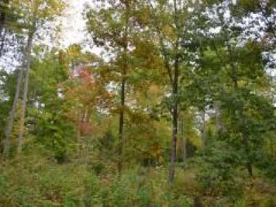 Tomahawk WI Residential Lots & Land For Sale: $39,900