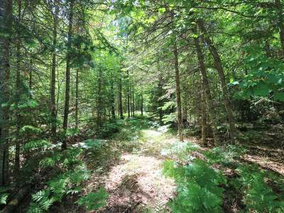 Eagle River Residential Lots & Land For Sale: On Quiet Creek Ln