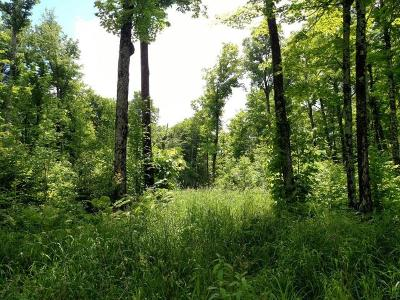 Residential Lots & Land For Sale: On Hwy 73