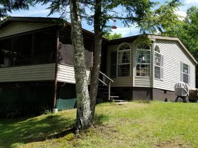 Watersmeet MI Single Family Home For Sale: $249,900