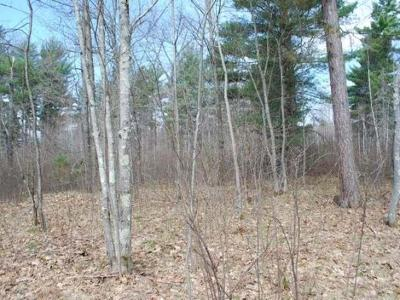 Residential Lots & Land For Sale: On Bluebird Ln