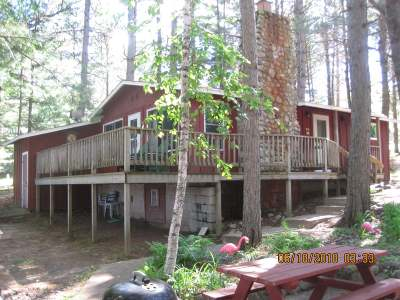Forest County, Iron Wi County, Langlade County, Lincoln County, Oneida County, Vilas County Single Family Home For Sale: 11199 Scott Rd