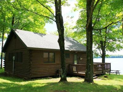 Forest County, Iron Wi County, Langlade County, Lincoln County, Oneida County, Vilas County Single Family Home For Sale: 6300 O Mearas Rd