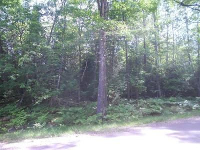 Eagle River Residential Lots & Land For Sale: On Deerskin Rd #lot