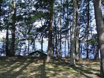 Residential Lots & Land For Sale: Lot 8 Bo Di Lac Dr S
