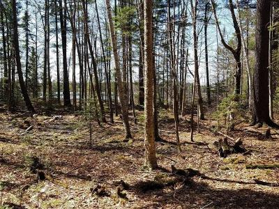 Woodruff WI Residential Lots & Land For Sale: $84,500
