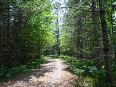 Residential Lots & Land For Sale: On Wooded Ln #PART