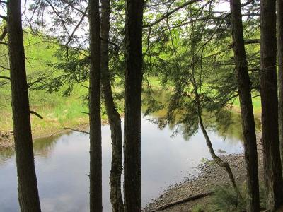 Lac Du Flambeau WI Residential Lots & Land For Sale: $18,500