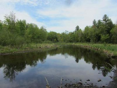 Lac Du Flambeau WI Residential Lots & Land For Sale: $19,900