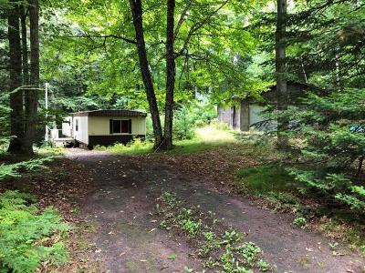 Forest County, Iron Wi County, Langlade County, Lincoln County, Oneida County, Vilas County Single Family Home For Sale: 8631 Camp Highland Rd