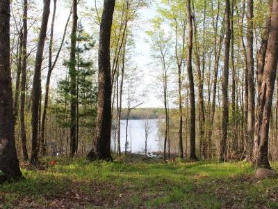Forest County, Iron Wi County, Langlade County, Lincoln County, Oneida County, Vilas County Single Family Home For Sale: On Freedom Tr
