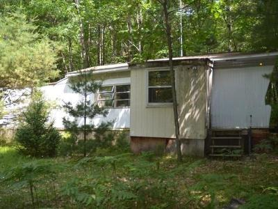 Forest County, Iron Wi County, Langlade County, Lincoln County, Oneida County, Vilas County Single Family Home For Sale: 7642 Trout Rd