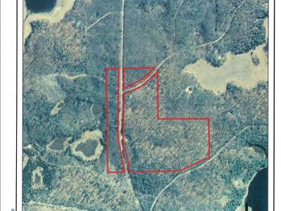 Crandon Residential Lots & Land For Sale: Near Bradley Lake Rd