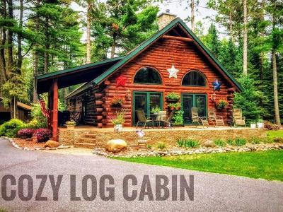 Eagle River Single Family Home For Sale: 1196 Zeman Rd
