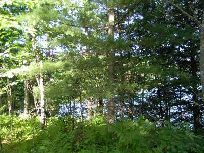 Summit Lake WI Residential Lots & Land For Sale: $49,900