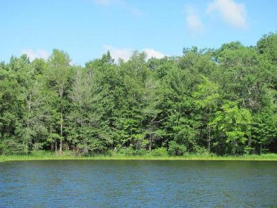 Minocqua WI Residential Lots & Land For Sale: $119,900