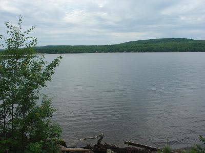 Residential Lots & Land For Sale: On East Shore Rd