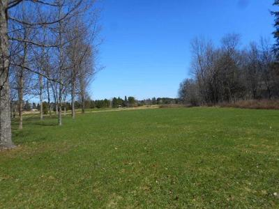 Forest County, Iron Wi County, Langlade County, Lincoln County, Oneida County, Vilas County Condo/Townhouse For Sale: On Chip Shot Ln #45