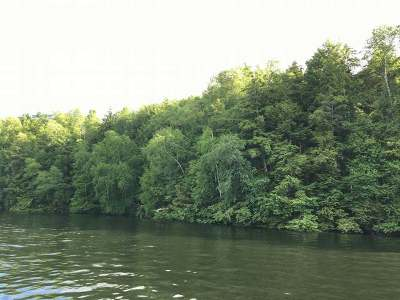 Gleason Residential Lots & Land For Sale: Lot 3 On Long Lake Dr