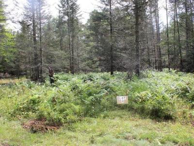 Eagle River Residential Lots & Land For Sale: On Thurber Tr #Lot 4