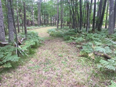 Residential Lots & Land For Sale: On Rads Rd