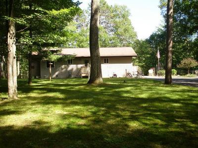 Vilas County Single Family Home For Sale: 3667 Chain O Lakes Rd